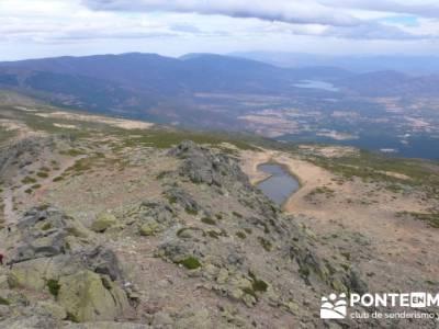 Lagunas de Peñalara - Parque Natural de Peñalara;senderismo guadalajara;arbol tejo